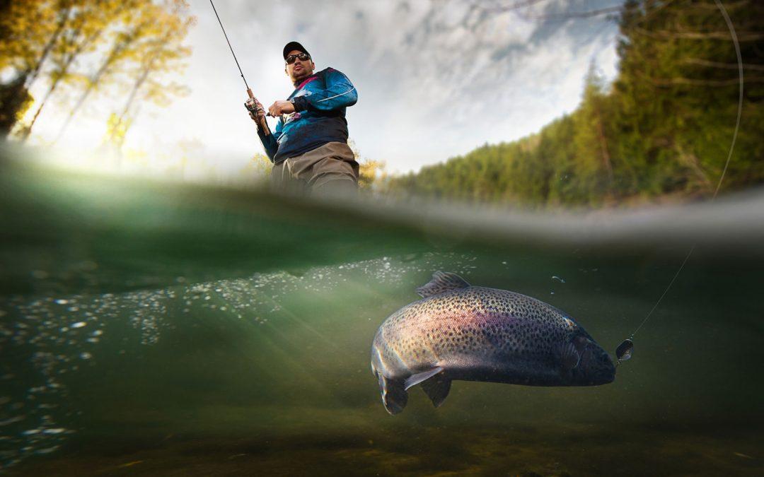 Forellenangeln – Tipps und Tricks für den Fang