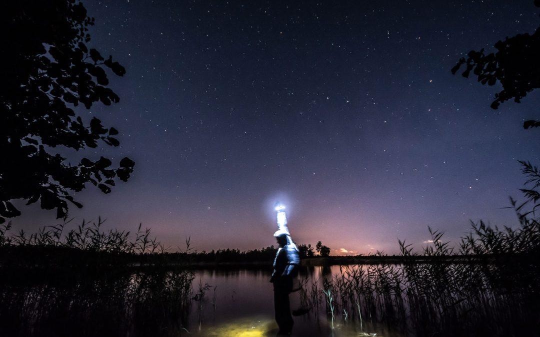 Nachtangeln – Zielfische, Ausrüstung und Tipps