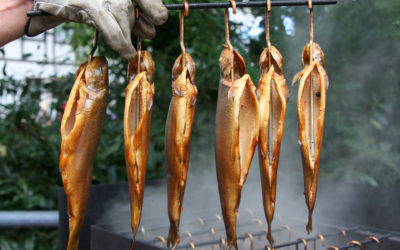 Forelle räuchern – mit Räucherofen oder im Topf!