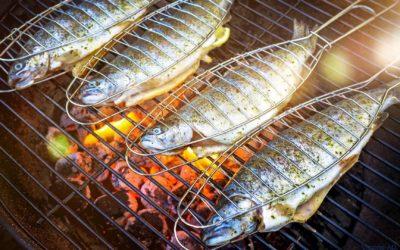 Forelle Grillen: Fisch vom Grill
