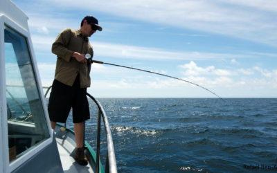 Vertikalangeln – einfach erklärt mit Tipps und Tricks